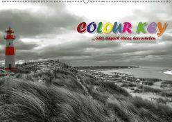 Colour Key …oder einfach etwas hervorgehoben (Wandkalender 2019 DIN A2 quer) von N.,  N.