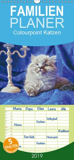 Colourpoint Katzen – Familienplaner hoch (Wandkalender 2019 , 21 cm x 45 cm, hoch) von Säume,  Sylvia