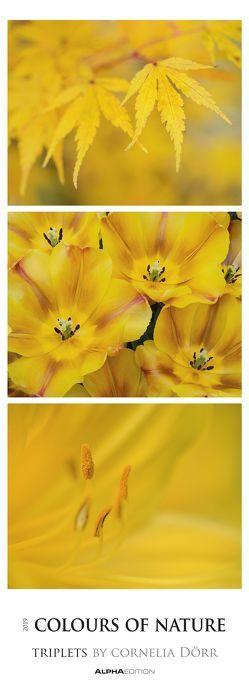 Colours of Nature – Triplets 2019 – Streifenkalender von ALPHA EDITION, Dörr,  Cornelia