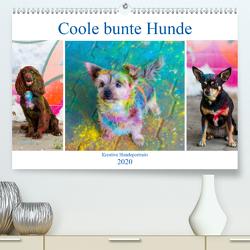 Coole bunte Hunde (Premium, hochwertiger DIN A2 Wandkalender 2020, Kunstdruck in Hochglanz) von Verena Scholze,  Fotodesign