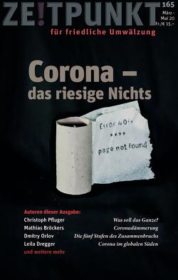 Corona – das große Nichts von Pfluger,  Christoph