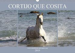 CORTIJO QUE COSITA (Wandkalender 2019 DIN A3 quer) von Eckerl Tierfotografie,  Petra