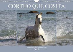 CORTIJO QUE COSITA (Wandkalender 2019 DIN A4 quer) von Eckerl Tierfotografie,  Petra
