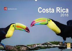 Costa Rica 2018 Exotische Vogelwelt (Wandkalender 2018 DIN A2 quer) von Bergwitz,  Uwe