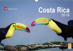 Costa Rica 2019 Exotische Vogelwelt (Wandkalender 2019 DIN A3 quer) von Bergwitz,  Uwe