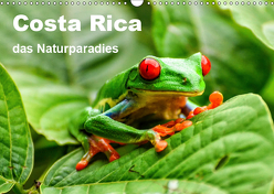 Costa Rica – das Naturparadies (Wandkalender 2019 DIN A3 quer) von Nowak,  Oliver