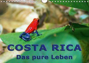 Costa Rica – das pure Leben (Wandkalender 2018 DIN A4 quer) von Berlin, Schoen,  Andreas
