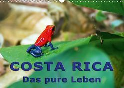 Costa Rica – das pure Leben (Wandkalender 2019 DIN A3 quer) von Berlin, Schoen,  Andreas