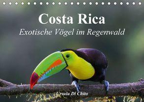 Costa Rica – Exotische Vögel im Regenwald (Tischkalender 2018 DIN A5 quer) von Di Chito,  Ursula