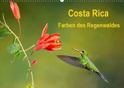 Costa Rica – Farben des Regenwaldes (Wandkalender 2019 DIN A2 quer) von Akrema-Photography