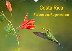 Costa Rica – Farben des Regenwaldes (Wandkalender 2019 DIN A3 quer) von Akrema-Photography