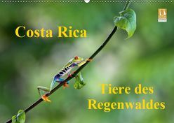 Costa Rica – Tiere des Regenwaldes (Wandkalender 2019 DIN A2 quer) von Akrema-Photography