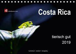 Costa Rica tierisch gut 2019 (Tischkalender 2019 DIN A5 quer) von Bergwitz,  Uwe