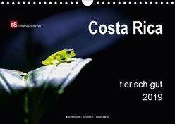 Costa Rica tierisch gut 2019 (Wandkalender 2019 DIN A4 quer) von Bergwitz,  Uwe