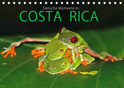 COSTA RICA – Tierische Momente (Tischkalender 2020 DIN A5 quer) von Matziol,  Michael