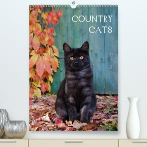 COUNTRY CATS (Premium, hochwertiger DIN A2 Wandkalender 2021, Kunstdruck in Hochglanz) von Menden,  Katho