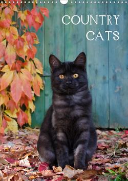 COUNTRY CATS (Wandkalender 2021 DIN A3 hoch) von Menden,  Katho