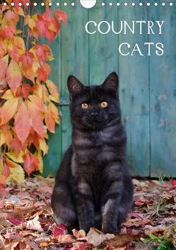 COUNTRY CATS (Wandkalender 2021 DIN A4 hoch) von Menden,  Katho