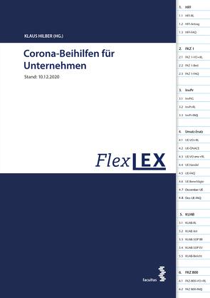 COVID-19 Rechtsgrundlagen für den Gesundheitsbereich von Holzer,  Thorsten