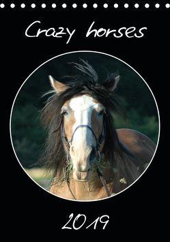 Crazy horses (Tischkalender 2019 DIN A5 hoch) von Lampert,  Claudia