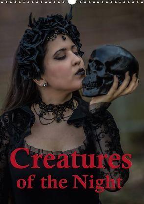 Creatures of the Night – Menschen in der Nacht (Wandkalender 2018 DIN A3 hoch) von Will,  Hans