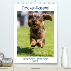 Dackel-Raserei (Premium, hochwertiger DIN A2 Wandkalender 2020, Kunstdruck in Hochglanz) von Teßen,  Sonja