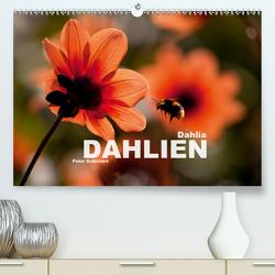 Dahlia – Dahlien (Premium, hochwertiger DIN A2 Wandkalender 2021, Kunstdruck in Hochglanz) von Schickert,  Peter