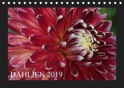Dahlien 2019 (Tischkalender 2019 DIN A5 quer) von Pustolla,  Astrid