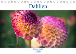 Dahlien – Blumenwunder der Natur (Tischkalender 2019 DIN A5 quer) von Stojke,  Norbert