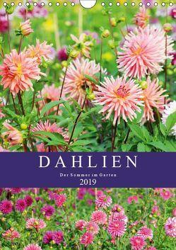 Dahlien – Der Sommer im Garten (Wandkalender 2019 DIN A4 hoch) von Frost,  Anja