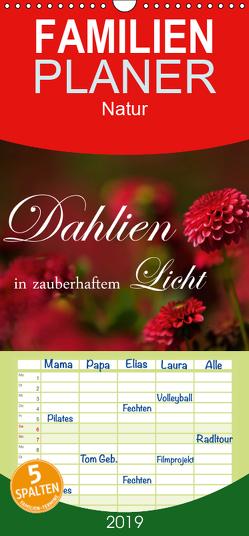 Dahlien in zauberhaftem Licht – Familienplaner hoch (Wandkalender 2019 , 21 cm x 45 cm, hoch) von Stehle,  Brigitte