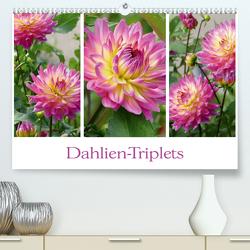 Dahlien-Triplets (Premium, hochwertiger DIN A2 Wandkalender 2021, Kunstdruck in Hochglanz) von B-B Müller,  Christine