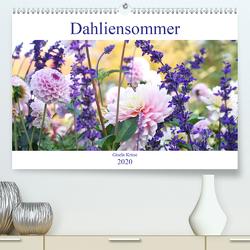 Dahliensommer (Premium, hochwertiger DIN A2 Wandkalender 2020, Kunstdruck in Hochglanz) von Kruse,  Gisela