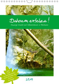 Dahoam erleben! Einmalige Wander-und Naturerlebnisse in Oberbayern (Wandkalender 2019 DIN A4 hoch) von Schimmack,  Michaela