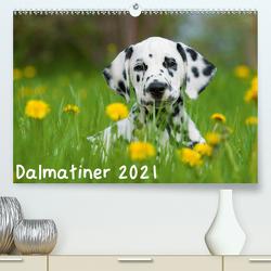 Dalmatiner 2021 (Premium, hochwertiger DIN A2 Wandkalender 2021, Kunstdruck in Hochglanz) von Dzierzawa,  Judith