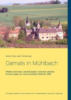 Damals in Mühlbach von Tischelmayer,  Norbert Franz-Josef