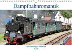 Dampfbahnromantik – Dampfbahnen auf schmaler Spur (Wandkalender 2019 DIN A4 quer) von Bujara,  André