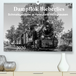 Dampflok Bieberlies in Herscheid-Hüinghausen (Premium, hochwertiger DIN A2 Wandkalender 2020, Kunstdruck in Hochglanz) von Rein,  Simone
