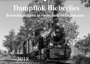 Dampflok Bieberlies in Herscheid-Hüinghausen (Wandkalender 2018 DIN A2 quer) von Rein,  Simone