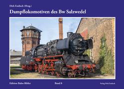 Dampflokomotiven des Bw Salzwedel von Endisch,  Dirk