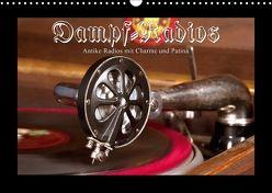 Dampfradios – Antike Radios mit Charme und Patina (Wandkalender 2018 DIN A3 quer) von Haselnusstafel,  k.A.
