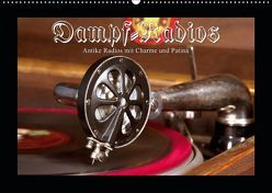 Dampfradios – Antike Radios mit Charme und Patina (Wandkalender 2019 DIN A2 quer) von Haselnusstafel