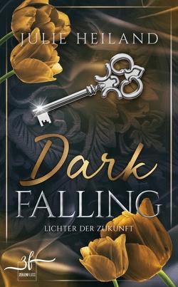 Dark Falling – Lichter der Zukunft von Heiland,  Julie