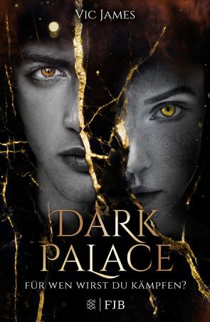 Dark Palace – Für wen wirst du kämpfen? von Fritz,  Franca, James,  Vic, Koop,  Heinrich