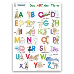 Das ABC der Tiere von Haurand,  Chiara, Momm,  Helga