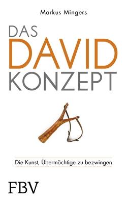 Das David-Konzept von Mingers,  Markus