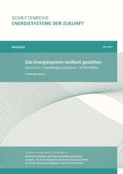 Das Energiesystem resilient gestalten von Renn,  Ortwin