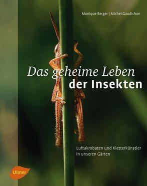 Das geheime Leben der Insekten von Berger,  Monique, Gaudichon,  Michel