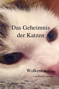 Das Geheimnis der Katzen / Das Geheimnis der Katzen – Wolkenkatzen von Amann,  Rosalie