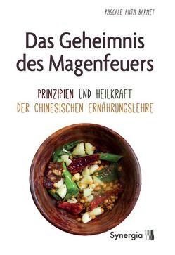 Das Geheimnis des Magenfeuers von Barmet,  Pascale A.